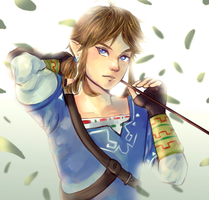 Link Breath of the Wild by R-ShinyStars
