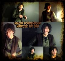 Hiccup Portraits by kh2kid