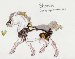 Shamas Import 2 by Myhorsephoenix
