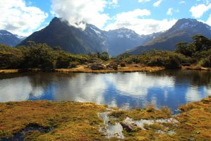 Milford track section 2 by small-flaming-cjer