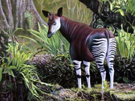 Okapi in Forest by WillemSvdMerwe