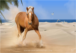 The beachcomber by JulieBales