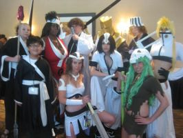 Bleach: Soul Society And More by NyNeko