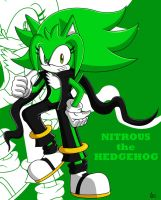 PC: Nitrous The Hedgehog by Tails1998