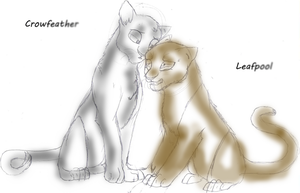 Crow feather and Leafpool by WanderingDraconis