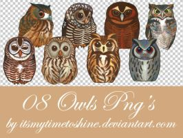 PNG pack 5 - OWLS by itsmytimetoshine