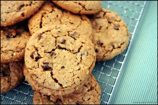 Peanutbutter Oatmeal Chocolate Chip Cookies by pandrina
