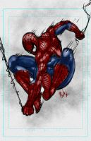Spiderman sketch and video by ErikVonLehmann