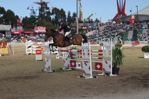 Showjumping 6 by SolEquus-Stock