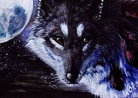 ACEO WhiteSpiritWolf by WolfRoad