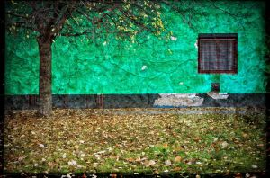 green wall red window by gonzofoto