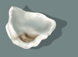 Oyster shell by Sr-Quixote