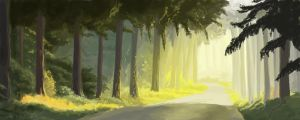 The Road by Thaximus