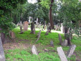 the old jewish cemetery 16 by Meltys-stock