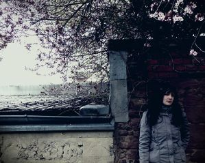 Until the end of spring by kero0ppi - Hadi DurMa T�kLa ...