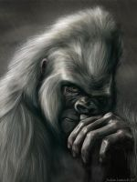 Gorilla by Tattered-Artemisia