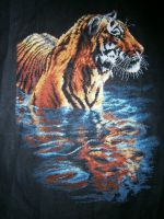 Tiger Chilling Out - Project 17 by LeeLeeG2