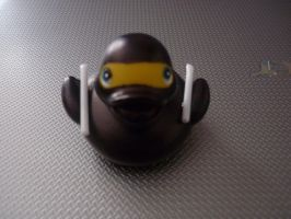Ninja duck by ShayeraLee