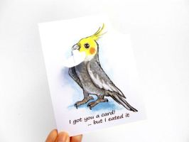 Hungry Cockatiel Greeting Card by sobeyondthis