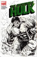 THE INCREDIBLE HULK BLANK VARIANT COVER SKETCH by dexterwee