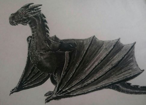 Little black dragon  by Stormfire1206