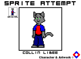 Sprite Attempt - Collin LiBee by NS-Games