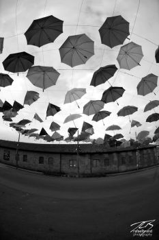 RFB 371 - Like umbrellas in the sky by NEO3
