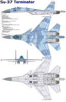 Sukhoi Su-37 Flanker-F by bagera3005