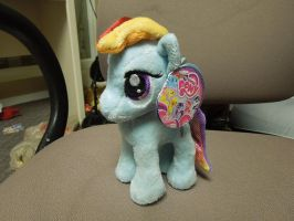 Rainbow Dash Plush by Tailji