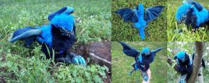 Cobalt the Baby Dragon by SaltyPuppy