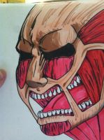 Colossal titan by boxofplagues