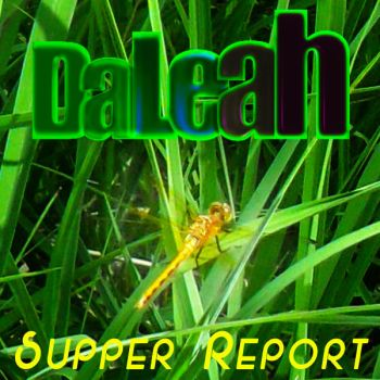 DaLeah Supper Report Dragonfly by DaLeahWeathers