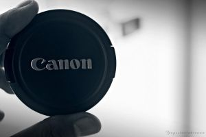 Because it's all about canon by yugo182