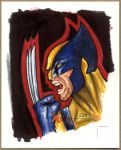 WOLVERINE, X-Men Sketch Card by Erik-Maell
