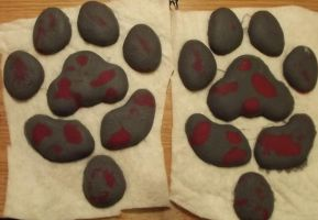 Blood splattered pawpads by Monoyasha
