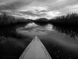Early Morning on the New River by PaddleGallery