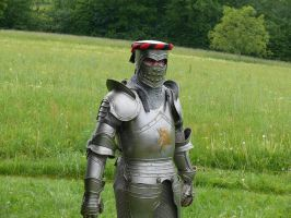 armor poses 5 by Wolkenfels-Stock