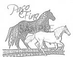 Paso Fino Coloring Page by dillwithit