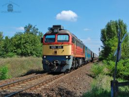 628 311 and 630 010 with a freight near Gyor by morpheus880223
