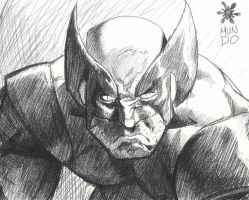 WOLVERINE sketch by Mundokk