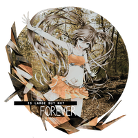 The Forest Is Large But Not Forever by adrian17vera