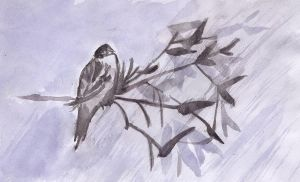 Nightingale- Watercolour by Shinigamichick39