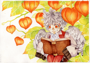 Librum Autumni by Shiranova