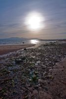 Arran from Seamill Beach by Sagereid