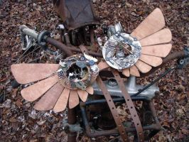 Steampunk Wings- Flightless bird by livetoletlive