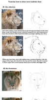 Semi realistic lion head tut by TorazTheNomad
