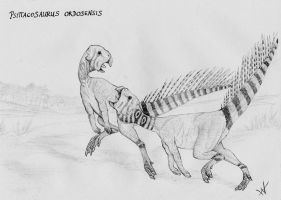 Psittacosaurus ordosensis by yoult