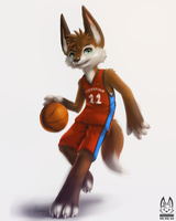 Basketball by thanshuhai