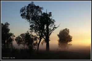 Misty Sunrise 2 by FireflyPhotosAust