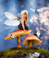 fairy dragonfly by Lubov2001